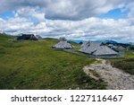 big green alpine mountains...   Shutterstock . vector #1227116467