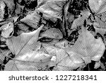 fall leaves. halftone with... | Shutterstock . vector #1227218341
