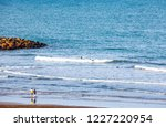 mar del plata  argentina   26... | Shutterstock . vector #1227220954