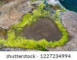 unusual background of stones ... | Shutterstock . vector #1227234994