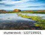 unusual background of stones ... | Shutterstock . vector #1227235021