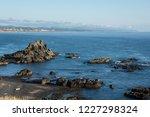 oregon coastline in newport...   Shutterstock . vector #1227298324