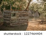 wooden building shelter on... | Shutterstock . vector #1227464404