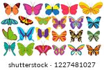 isolated  set of beautiful... | Shutterstock .eps vector #1227481027