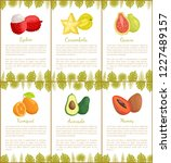 lychee and carambola  guava and ...   Shutterstock .eps vector #1227489157