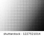 monochrome dots background.... | Shutterstock .eps vector #1227521014