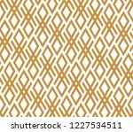abstract geometric pattern. a...   Shutterstock . vector #1227534511