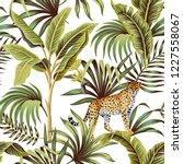 tropical vintage banana tree ... | Shutterstock .eps vector #1227558067
