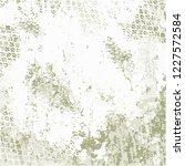 grunge urban vector texture... | Shutterstock .eps vector #1227572584
