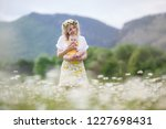 happy family in nature. woman... | Shutterstock . vector #1227698431
