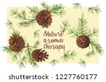 realistic botanical ink sketch... | Shutterstock .eps vector #1227760177