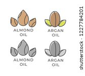 almond and argan oil icon.... | Shutterstock .eps vector #1227784201