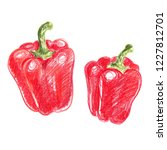 sweet peppers. paprika. sketch... | Shutterstock . vector #1227812701