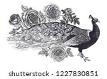 decoration with bird and... | Shutterstock .eps vector #1227830851