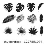hand drawn tropical palm leaves ... | Shutterstock .eps vector #1227851074