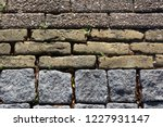 decorative pattern of three... | Shutterstock . vector #1227931147