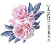 pink peonies flower vector hand ...   Shutterstock .eps vector #1227938947
