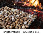 closeup of a tray of caragols a ... | Shutterstock . vector #1228051111