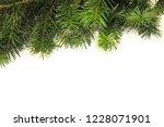 christmas tree branch on white... | Shutterstock . vector #1228071901