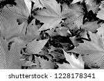 fall leaves. halftone with... | Shutterstock . vector #1228178341