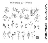 set of branches flowers. hand...   Shutterstock .eps vector #1228239097