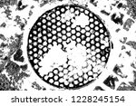abstract background. monochrome ... | Shutterstock . vector #1228245154