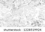 halftone grunge rough stripes... | Shutterstock .eps vector #1228519924