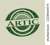 green arctic rubber stamp with... | Shutterstock .eps vector #1228564474
