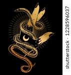 hand with snake bohemian... | Shutterstock .eps vector #1228596037