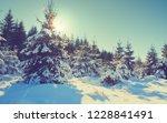 sunset in winter forest. winter ... | Shutterstock . vector #1228841491