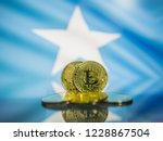 bitcoin gold coin and defocused ... | Shutterstock . vector #1228867504