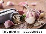 garlic bulb and garlic cloves ... | Shutterstock . vector #1228880611