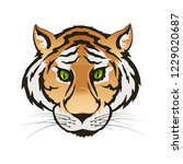 vector emerald green eyes tiger ... | Shutterstock .eps vector #1229020687