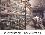 clothing industry textile... | Shutterstock . vector #1229039551