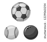 isolated object of sport and... | Shutterstock . vector #1229063254
