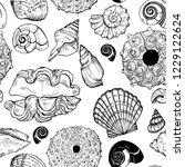 sea shells and sea urchin shells | Shutterstock .eps vector #1229122624