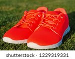 sports shoes sneakers on fresh... | Shutterstock . vector #1229319331
