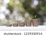 investment concept   plant...   Shutterstock . vector #1229330914