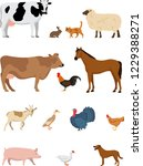 set of cute farm animals... | Shutterstock .eps vector #1229388271