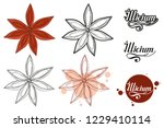hand drawn star anise  spicy... | Shutterstock .eps vector #1229410114