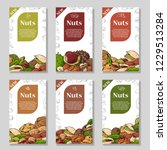 nuts and seeds collection. hand ... | Shutterstock .eps vector #1229513284