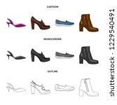 vector illustration of footwear ... | Shutterstock .eps vector #1229540491