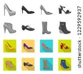 vector illustration of footwear ... | Shutterstock .eps vector #1229592937