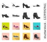 vector illustration of footwear ... | Shutterstock .eps vector #1229592961