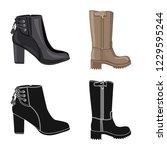 vector design of footwear and... | Shutterstock .eps vector #1229595244