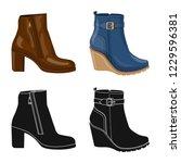 vector design of footwear and... | Shutterstock .eps vector #1229596381