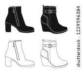 vector design of footwear and... | Shutterstock .eps vector #1229596384