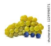 fresh  nutritious  tasty grapes.... | Shutterstock .eps vector #1229598571