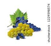 fresh  nutritious  tasty grapes.... | Shutterstock .eps vector #1229598574