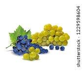 fresh  nutritious  tasty grapes.... | Shutterstock .eps vector #1229598604